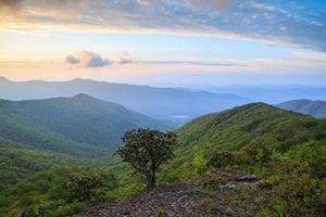 beech mountain real estate